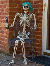 5 Ft. Tall Halloween Skeleton Full Body Skeleton for Best Halloween Decoration