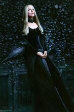 Lady Raven Poster 24x36 Ps8775