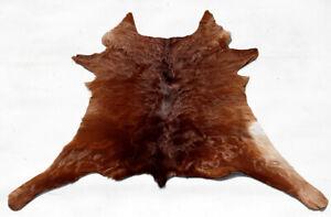 """Rare Cowhide Rugs Calf Hide Cow Skin Rug (26""""x29"""") Dark Brown & Beige CH8525"""
