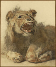 European Master Drawing Reproduction: A Snarling Lion - Fine Art Print