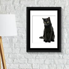 Wall Decoration Frames Black Cat Think Poster Art School Café Office Home Décor