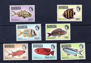 Barbuda 1968 Fishes MNH set S.G. 21-27