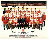 NHL 1975 - 76 Detroit Red Wings Team Picture Color 8 X 10 Photo Picture
