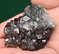 Sphalerite with Quartz on Andradite  El Mochito Mine, Honduras 411006