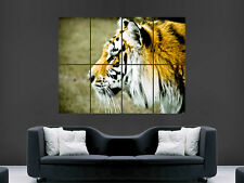 TIGER ART WALL LARGE IMAGE GIANT POSTER !!