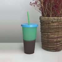Reusable Plastic Temperature Color Changing Cold Cup Summer Drink Water Mug New