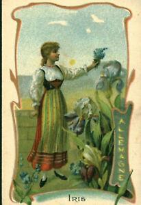 Image ancienne chromo un pays une fleur iris myosotis  Allemagne art nouveau