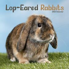 More details for lop eared rabbits calendar 2022 cute pet wall 15% off multi orders!