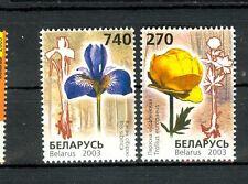 Flower-Flowers Belarus 2003
