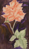 European floral watercolor drawing flower