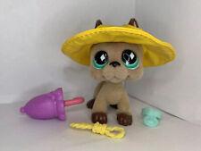 Littlest Pet Shop Authentic LPS #636 Fuzzy Great Dane With Rain Hat
