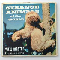 Vintage View-Master Reel Set B615 STRANGE ANIMALS OF THE WORLD (1958)