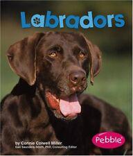 Labradors (Dogs)