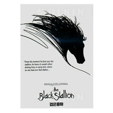 The Black Stallion (1979) DVD - Carroll Ballard, Kelly Reno, Mickey Rooney (NEW)
