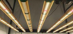 Grower's Choice ROI-E720 TSL Top Shelf Lighting LED Grow Light System - 720W