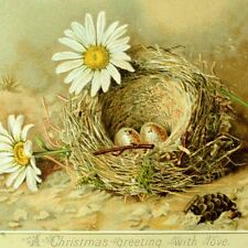 1870's-80's Lovely Christmas With love Eggs Nest Daisies Poem Victorian Card *X