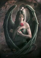 ANGEL ROSE - ANNE STOKES FANTASY ART - FABRIC POSTER - 30x40 WALL HANGING 52030