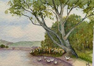 ACEO Original Miniature Watercolour Painting - On the Pond - Ducks Landscape