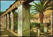 AA2983 Napoli - Provincia - Ercolano - Casa d'Argo - Peristilio