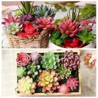 Garden Miniature Home Decor Plastic Fake Plant Cactus Artificial Succulents