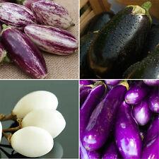 Auberginen Mischung Solanum melongena schwarz weiß violett 20 Samen Aubergine