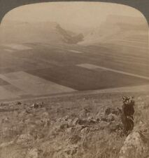 Palestine. N. E. from Mt. Beatitudes to Capernaum & Sea of Galilee. Stereoview