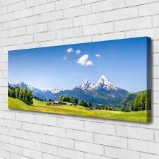 Leinwand-Bilder Wandbild Canvas Kunstdruck 125x50 Felder Baum Gebirge Landschaft