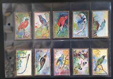 More details for cavanders 1926 foreign birds - complete set of 25 cigarette cards