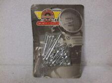 """""""Cobra"""" Chrome Allenbolt Engine Kit for 95-98 Honda ACE and 97-98 Spirit - $34"""