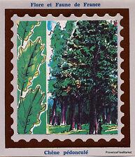 ARBRES CHENE PEDONCULE Yt2386  FRANCE  FDC Enveloppe Lettre Premier jour CEF