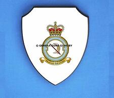 ROYAL AIR FORCE 600 CITY OF LONDON SQUADRON WALL SHIELD (FULL COLOUR)
