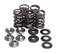 Raptor Grizzly Rhino 660 Yamaha Kibblewhite Racing Valve Spring Kit 2001-2008