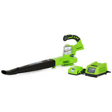 Greenworks Dual Speed Cordless 24V 130 Mph Leaf Blower with Battery | 24352