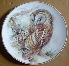 Lovely Collectors Plate TAWNY OWL
