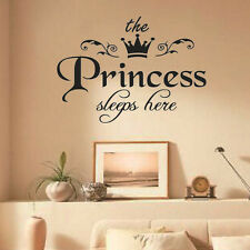 Removable Princess Sleeps Here Wall Stickers Art Decals BabyGirls Room Decor HOT