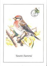 FDC 2457 - Oiseau Buzin sur gravure format A4 !