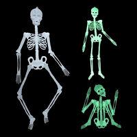 Humain lumineux squelette pendaison décor Halloween partie effrayant crâne