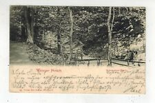 1903 Weisser Hirsch Dresden Germany Scenic Forest Real Picture Postcard Cover