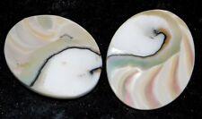 Nautilus Shell Natural White Cabochon Loose Gemstone Lot 19Cts. 6443