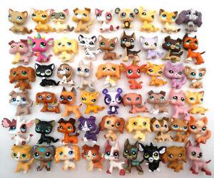 Littlest Pet Shop #3573 #2291 #2210 #2249 LPS Girl Toys Collie Dog Cat Dane Dog