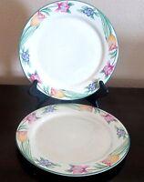 Oneida Stoneware Tulip Garden Multicolor Tulips Dinner Plates x2