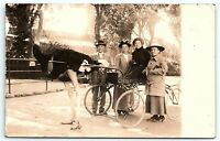 VTG Postcard Real Photo RPPC California Cawstons Ostrich Farm Family Cart B1