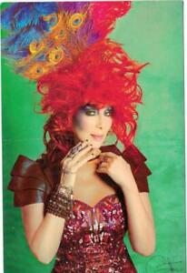 """CHER Color Postcard 5.5""""x8.5"""" Chefs for Humanity 2013 Wholesome Wave middle bend"""