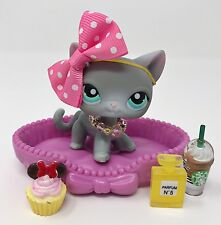 Littlest Pet Shop LPS Lot Gray Siamese Short Hair Cat Aqua Eyes 126 Accessories