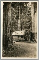 RPPC Postcard Mt Tampalpais and Muir Woods RV CA the cabin with a man sitting