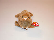 PAUL TY BEANIE BABY NEW CONDITION SWING TAG 2 23 1999 CHINA 9cb3c58f3a41