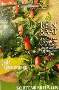 Chili Capella orange - Saatgut - Samen  - Bio  - aus biologischem Anbau  Demeter