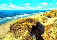 Insel Sylt , Dünen am Meer ; Ansichtskarte , gelaufen