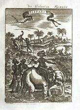 AFRICA, ELEPHANTS, RIDING & HUNTING Allain Mallet 1719 Antique Print
