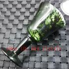 Natural Dark Green Chinese Jade Wine Glass Cup Hand-carved Crafts Cup
